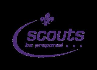 scout_logo.gif